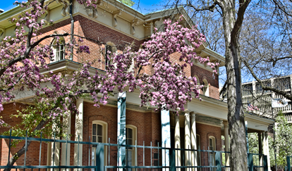 The Jane Addams Hull House Museum is one of Little Italy's historic attractions.